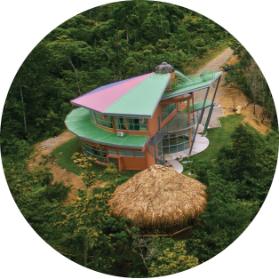 York's EcoCampus in Las Nubes Forest